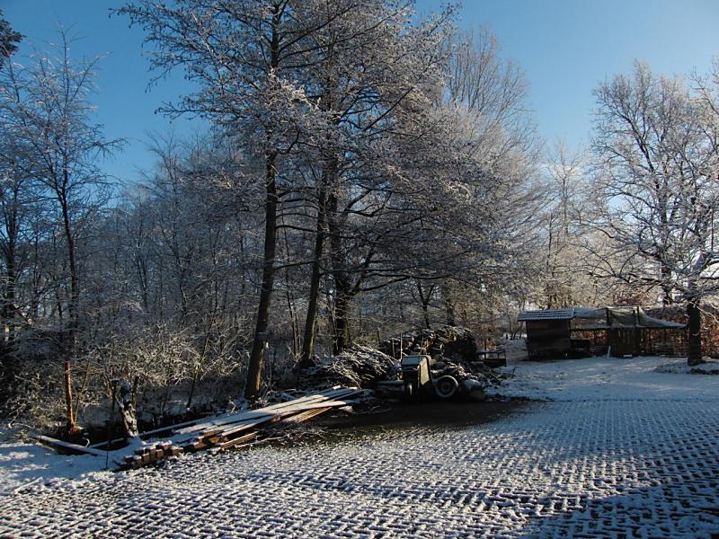 wintertuin-30-1-05