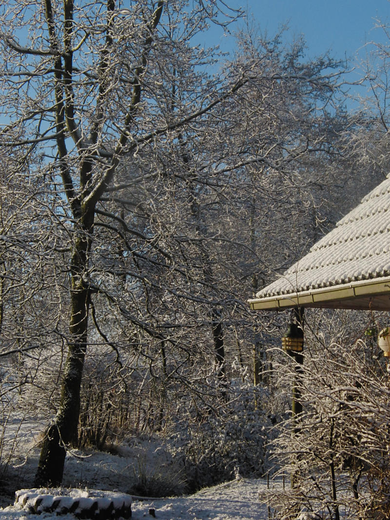wintertuin-30-1-08