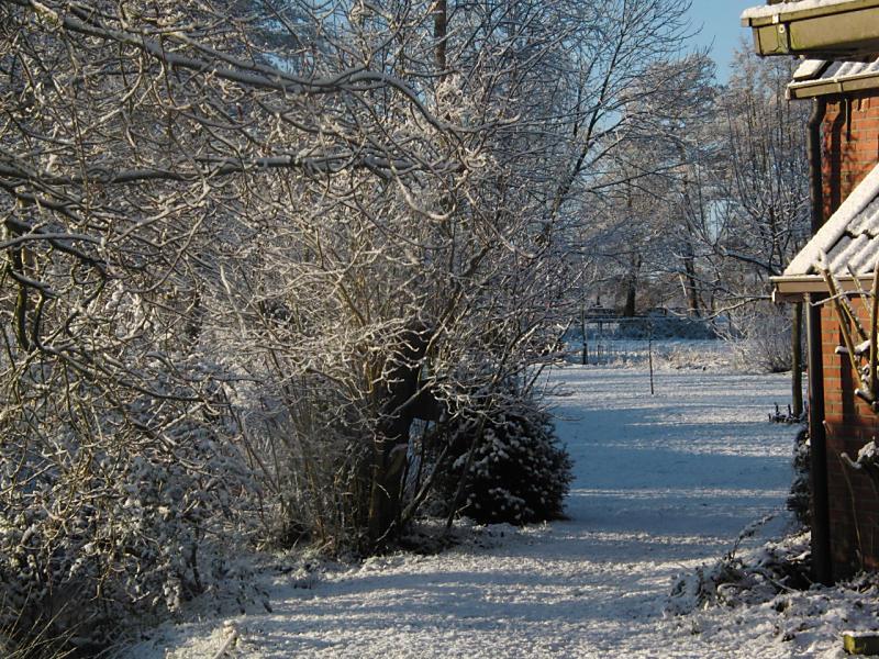 wintertuin-30-1-10