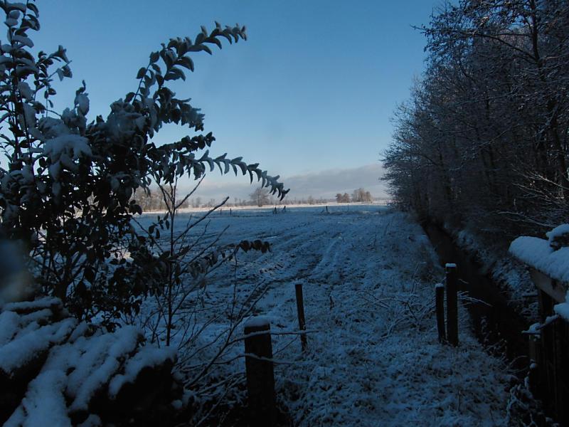 wintertuin-30-1-17