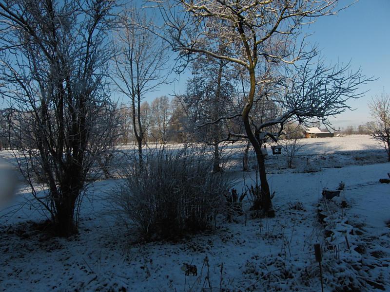 wintertuin-30-1-20