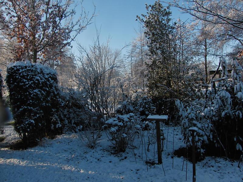 wintertuin-30-1-21