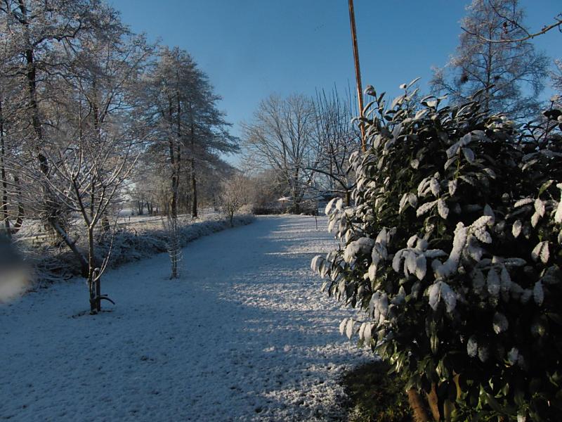 wintertuin-30-1-23