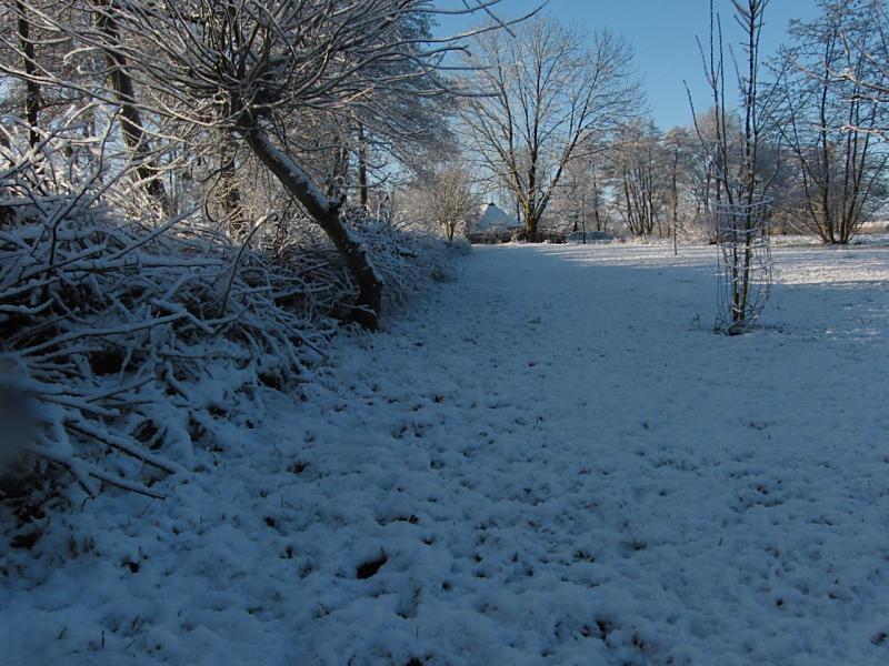 wintertuin-30-1-27